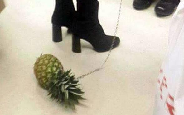 Ananasa tasma takıp metroda gezdirdi olay oldu!