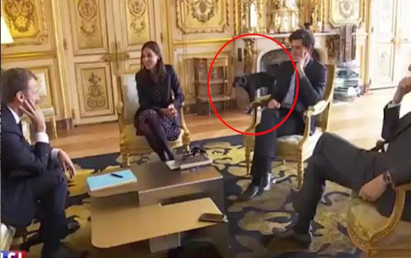 Macron'un köpeği kameralar karşısında şömineye çişini yaptı