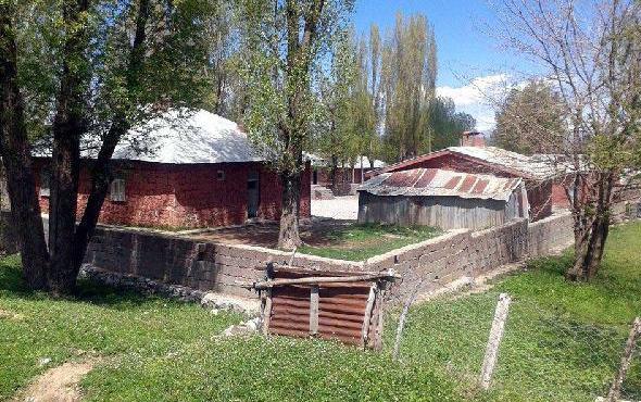 Muş'ta okul bahçesinde ağaç devrildi: Ölü ve yaralılar var