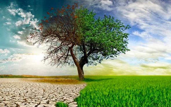 Topraktan salınan karbon gazı küresel ısınmayı hızlandırıyor