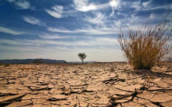 Kızartma yapmak küresel ısınmayı engelliyor mu?