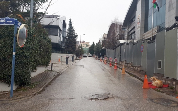 Ankara Büyükşehir harekete geçti BAE'ye tokat gibi yanıt