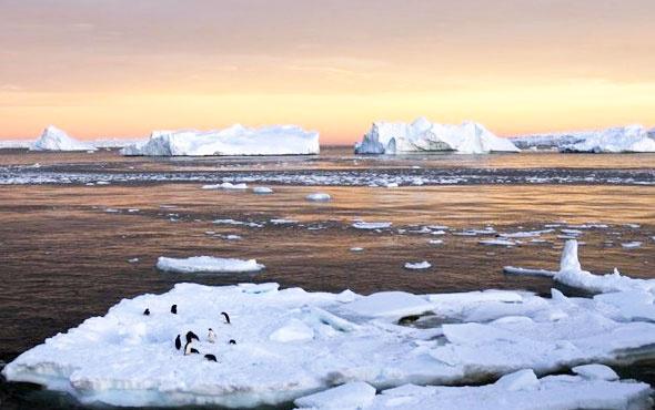 Kutupları yeniden dondurmanın bedeli 500 milyon dolar