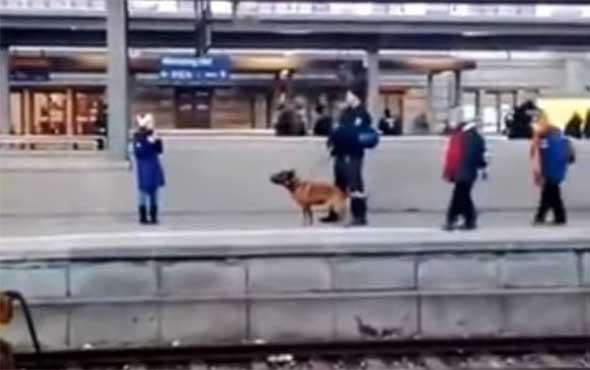 Polis köpeği kadını raylara attı! Korku dolu anlar