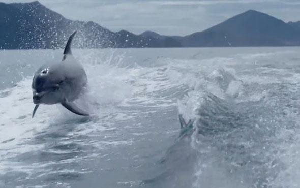Teknedeki film ekibine 'yunus' şov