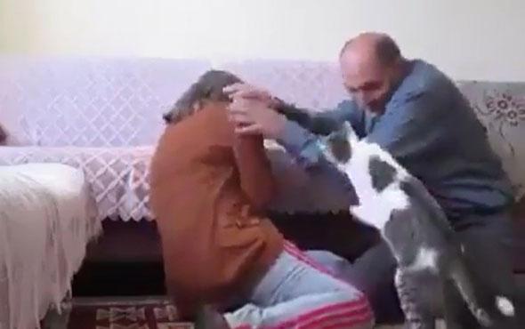 Eşine şiddet uygulayan adamı durduran kedi!