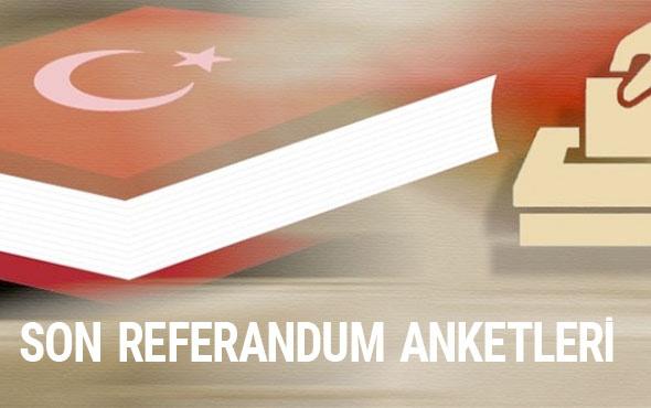 Adil Gür referandum anket sonuçlarından çıkan Kürt bombası!