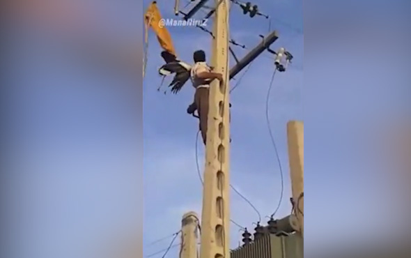 Kuşu kurtarırken elektrik çarptı
