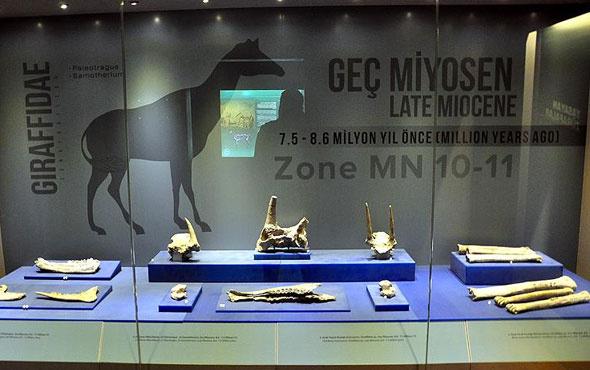 Türkiye yıl sonuna kadar 11 müzeye daha kavuşuyor