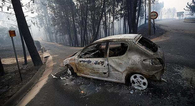 Orman Yangını: 62 kişi hayatını kaybetti..