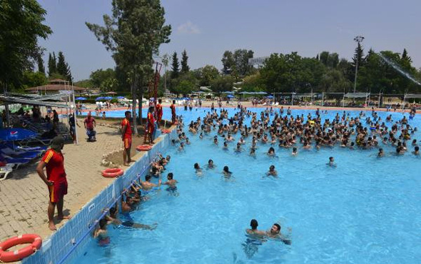 Havuza 12 kişilik taciz timi !