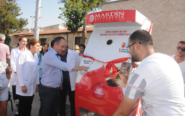 Mardin'de sokak hayvanlarına özel otomat