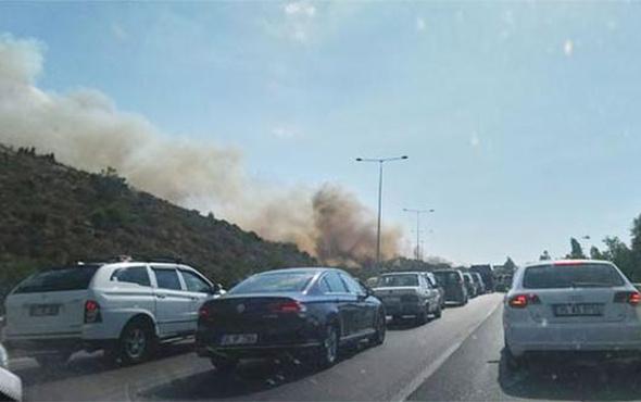 İzmir'deki orman yangını otoyolu kapattı