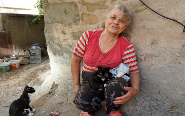 Emekli maaşıyla hasta oğlu ve 100 kediye bakıyor
