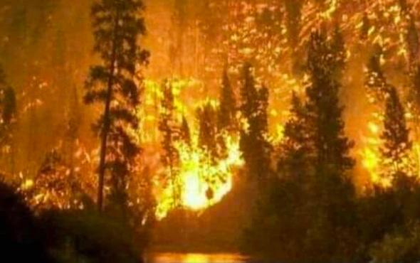 Domaniç'teki yangın Bilecik'e sıçradı