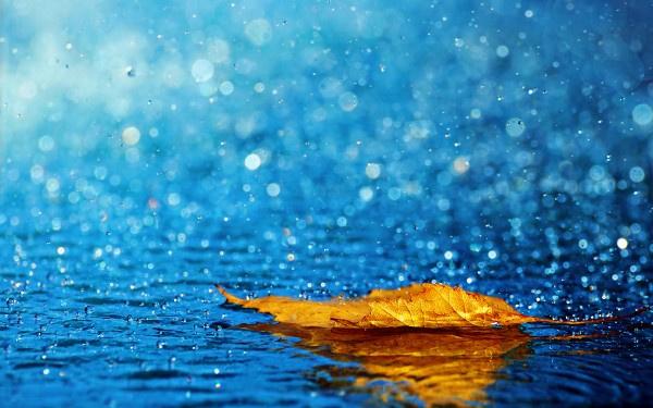 18 il aşırı sıcak 25 il yağmurlu! İl il hava durumu tahmini