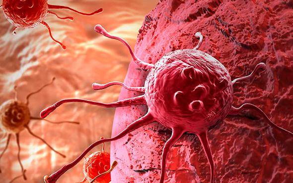 Kanser hücrelerini aç bırakarak yok ettiler