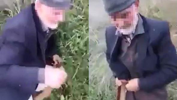 Cami önünde köpeğe tecavüz ederken böyle yakalandı