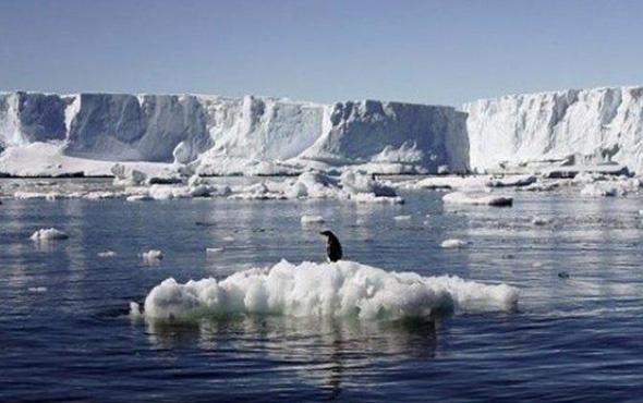 Bu sesi ilk kez duyacaksınız! Şarkı söyleyen buzullar...