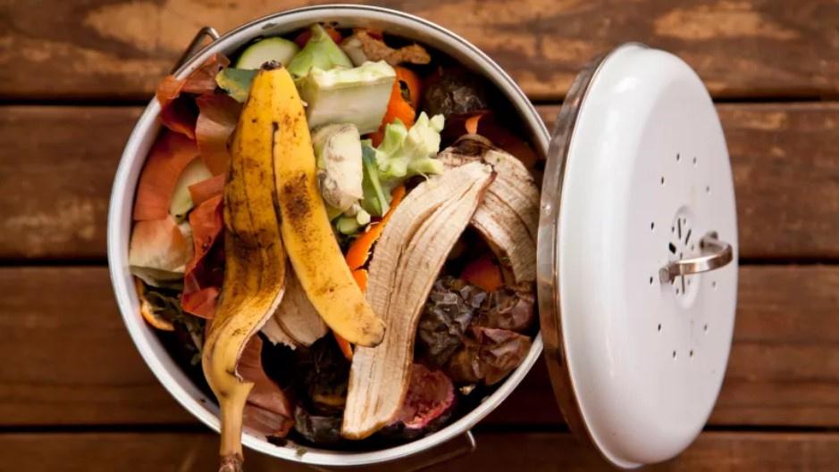 Restoranların gıda atıklarını çöpe atması yasaklandı
