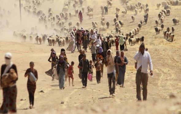 Kamu Denetçisi uyardı 'Suriyeliler gitmeyecek kalıcı politika lazım'