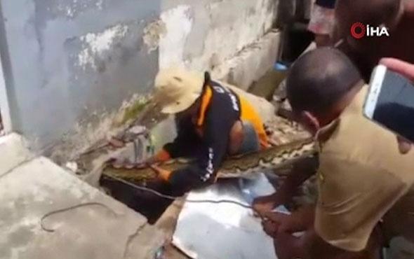 Su borusuna gizlenen 10 metrelik yılanı elleri ile çıkardılar