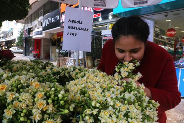 Koklamayı parayla sattı çiçekleri parayla koklattı