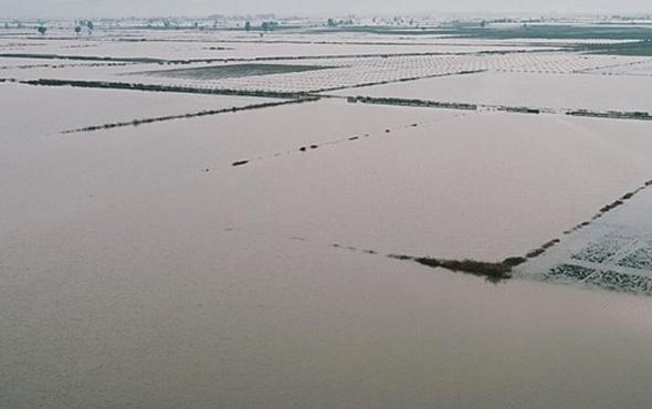 Mersin'de tarlalar ve seralar sele gitti çok büyük hasar var