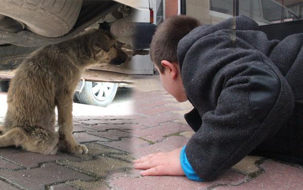 Küçük çocuk yaralı köpeğin başından 1 saat ayrılmadı