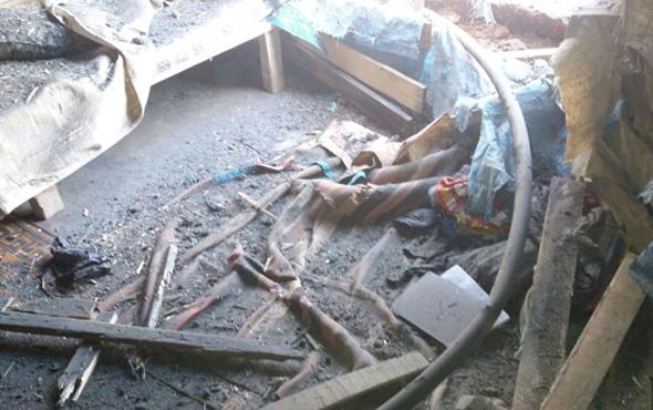 Suriyelilerin barındığı Atme kampına roketli saldırı: 3 ölü, 15 yaralı