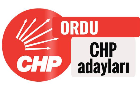 CHP Ordu milletvekili adayları kimler 2018 listesi
