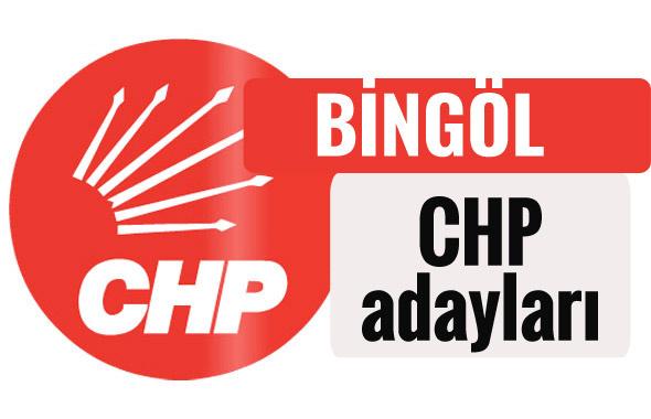 CHP Bingöl milletvekili adayları kimler 2018 listesi