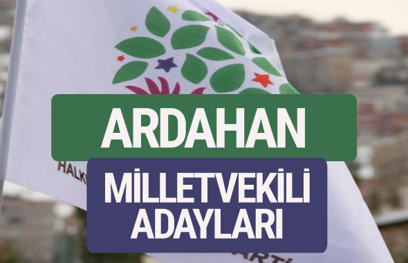 HDP Ardahan milletvekili adayları 2018 YSK isim listesi