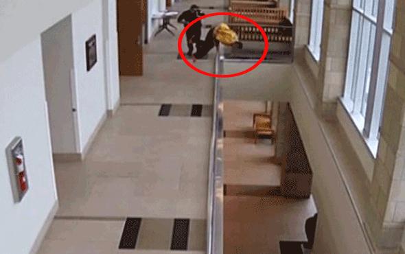 Elleri kelepçeli mahkum mahkemeden kaçıp kendini boşluğa bıraktı