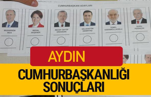 Aydın Cumhurbaşkanlığı seçim sonucu 2018 Aydın sonuçları