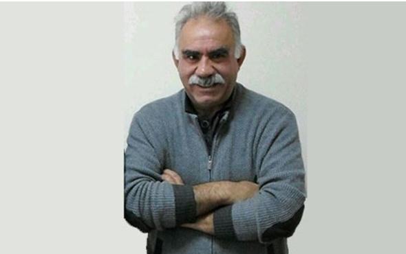 Öcalan'ın bir yeğeni daha milletvekili oldu