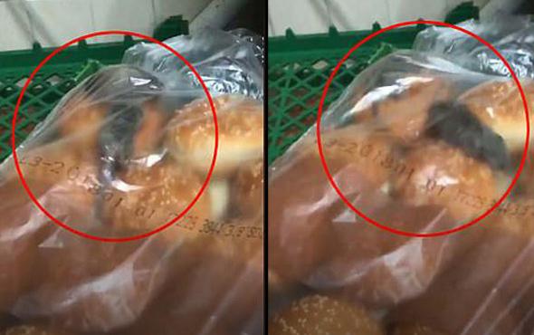 Dünyaca ünlü fast food firması infial yarattı korkunç görüntü!