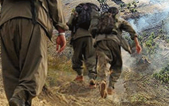 PKK'nın İskandinavya sorumlusu yakalandı