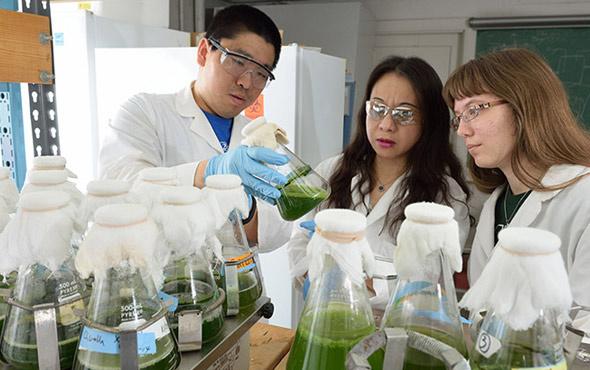 Biyosistem Mühendisliği taban puanları 2018 4 yıllık üniversite başarı sıralaması
