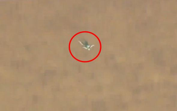 7 bin 620 metreden paraşütsüz atladı!