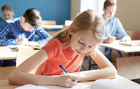 Teşvik sonuçları sorgulama açıklanıyor e okul TC ile özel okul sonuc öğrenme