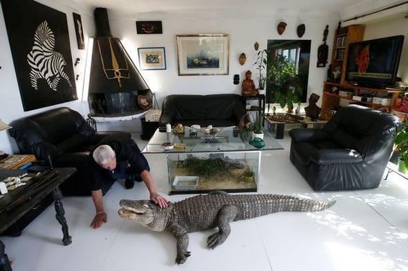 Ev ev değil vahşi doğa parkı! Evinde beslediği hayvanları görünce şok olacaksınız