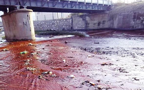 Aydın'da derede korkutan manzara! Suyun rengi kırmızı aktı