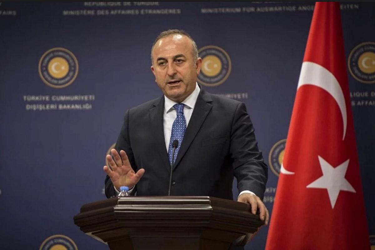 Bakanı Çavuşoğlu Suud yetkililere 'Neden robot resim'