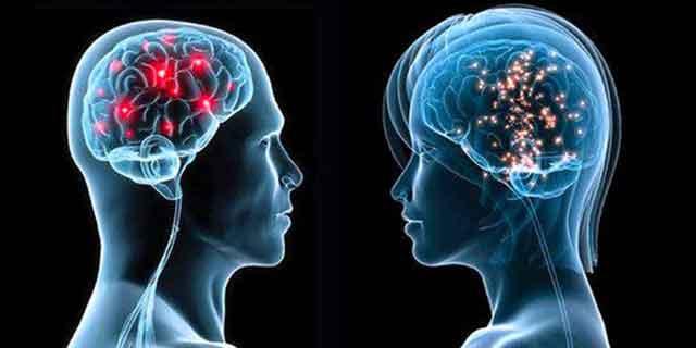 Şaşırtan araştırma! Kadınların beyni erkeklere göre... - Sayfa 1