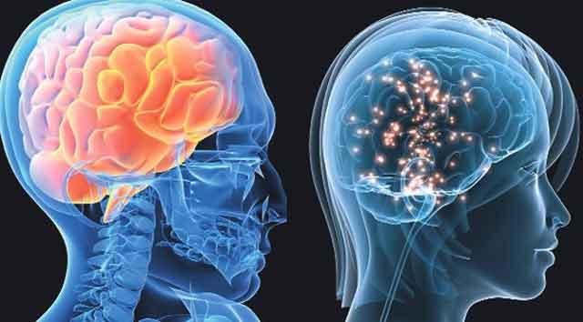Şaşırtan araştırma! Kadınların beyni erkeklere göre... - Sayfa 3