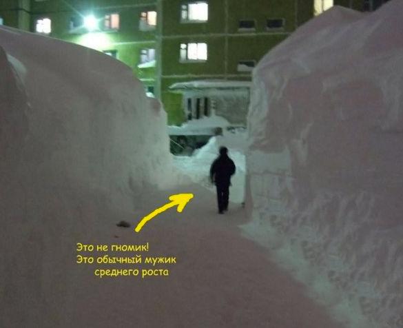 kar yağışı, kar
