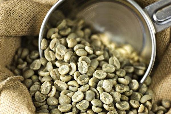 Yeşil kahvenin faydaları nelerdir?