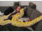 Evde bir yılanla yaşamak mı?