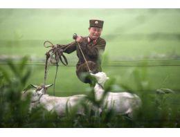 Kuzey Kore'yi böyle görüntülüyorlar!